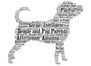 Logo Puggle