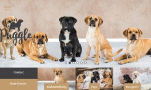 Puggle & Co heeft een vernieuwde website!